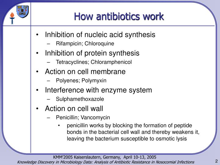 How antibiotics work