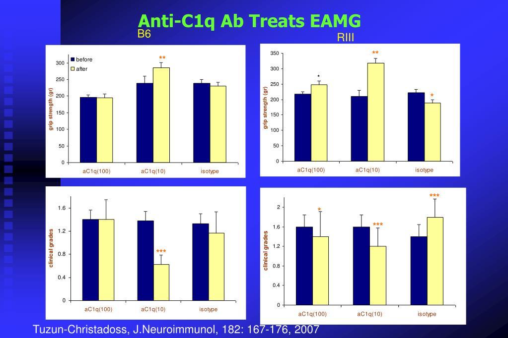 Anti-C1q Ab Treats EAMG