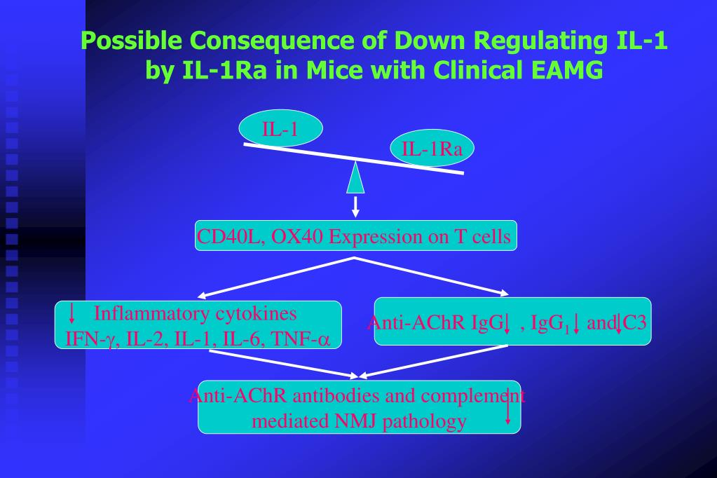 Possible Consequence of Down Regulating IL-1 by IL-1Ra in Mice with Clinical EAMG