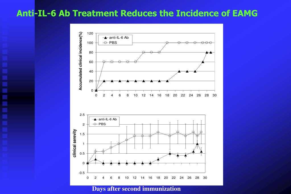 Anti-IL-6 Ab Treatment Reduces the Incidence of EAMG