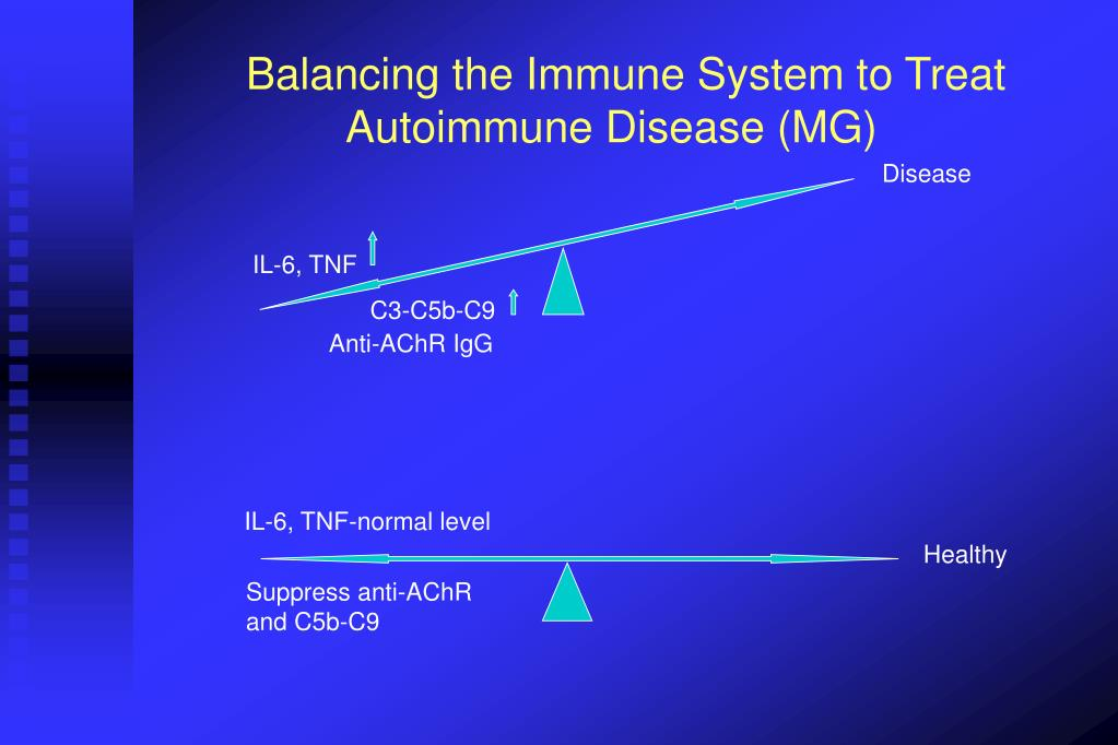 Balancing the Immune System to Treat    	Autoimmune Disease (MG)