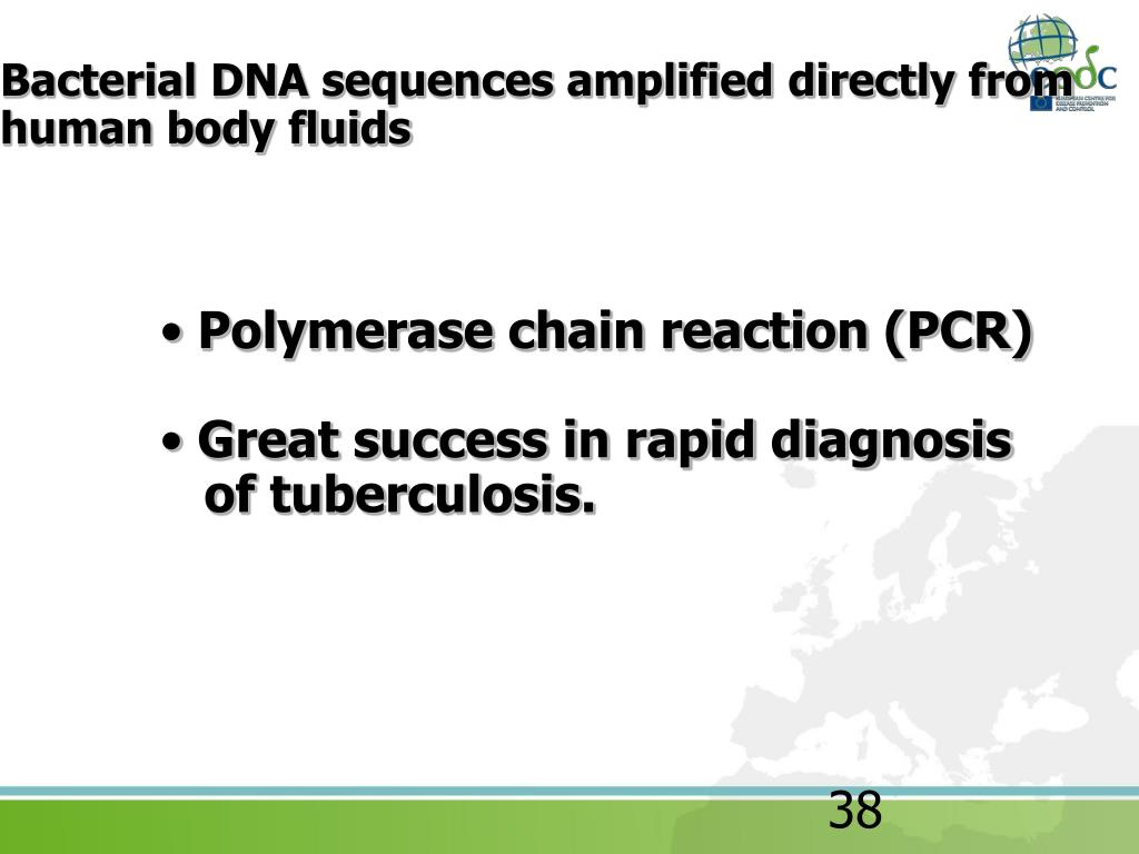 Bacterial DNA sequences amplified directly from human body fluids