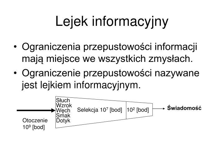 Lejek informacyjny