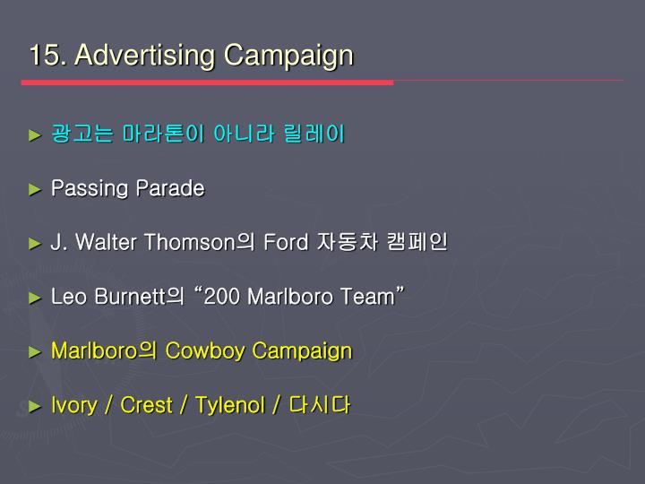 15. Advertising Campaign