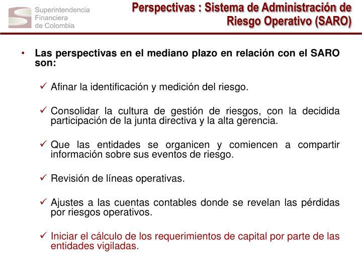 Perspectivas : Sistema de Administración de Riesgo Operativo (SARO)