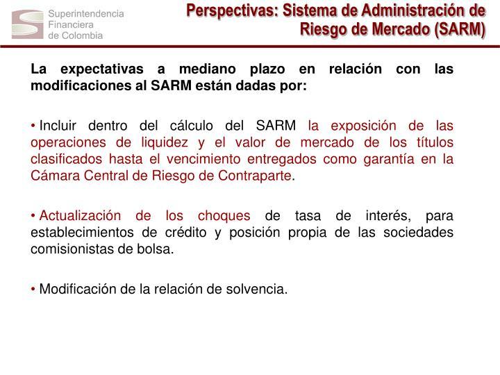 Perspectivas: Sistema de Administración de Riesgo de Mercado (SARM)