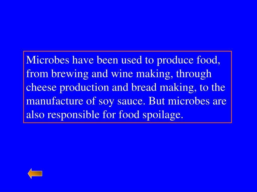 Microbes have been used to produce food, from brewing and wine making, through cheese production and bread making, to the manufacture of soy sauce. But microbes are also responsible for food spoilage.