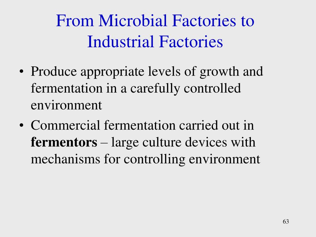 From Microbial Factories to Industrial Factories