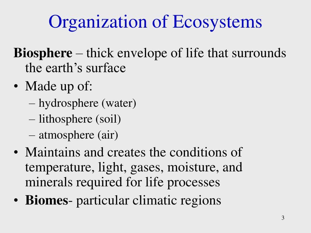 Organization of Ecosystems