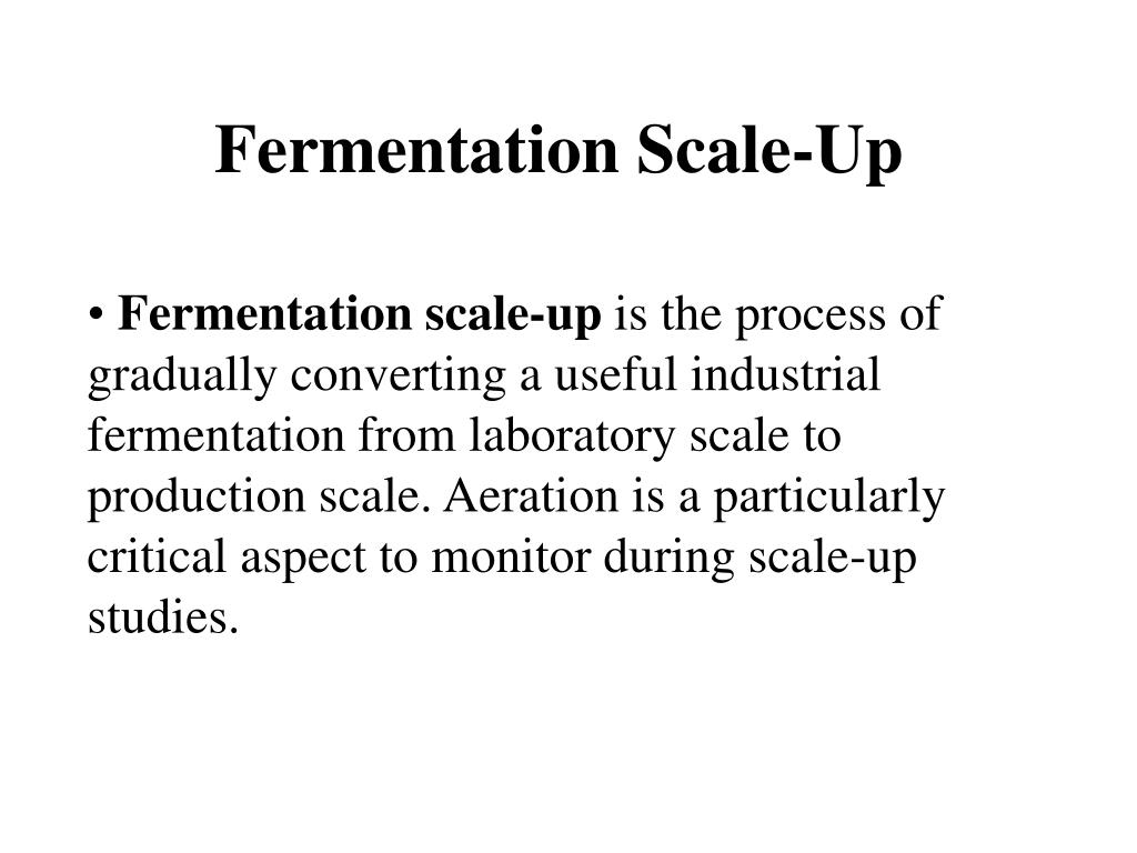 Fermentation Scale-Up