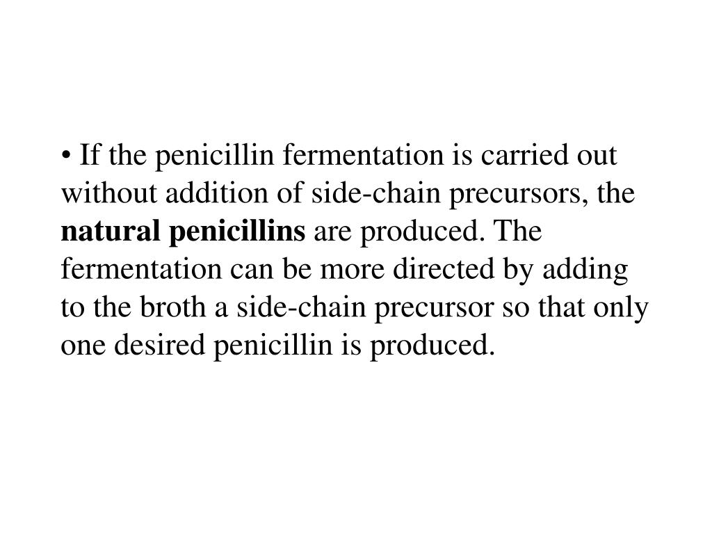 If the penicillin fermentation is carried out without addition of side-chain precursors, the