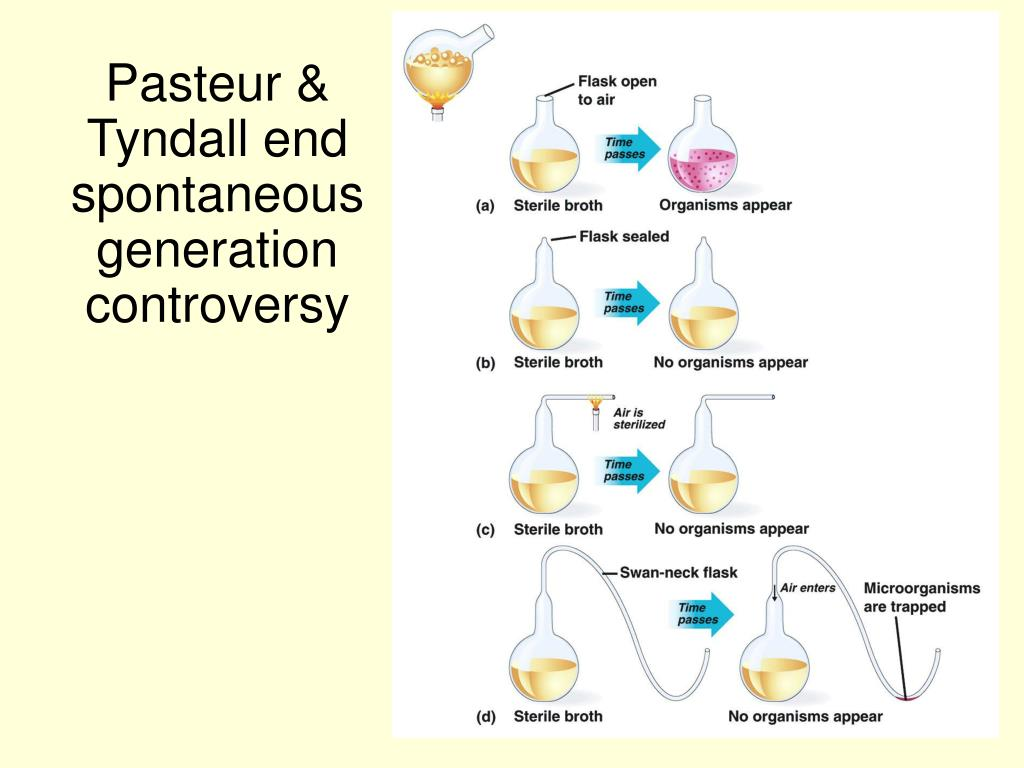 Pasteur & Tyndall end spontaneous generation controversy