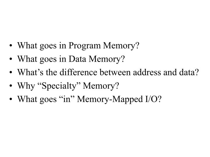What goes in Program Memory?