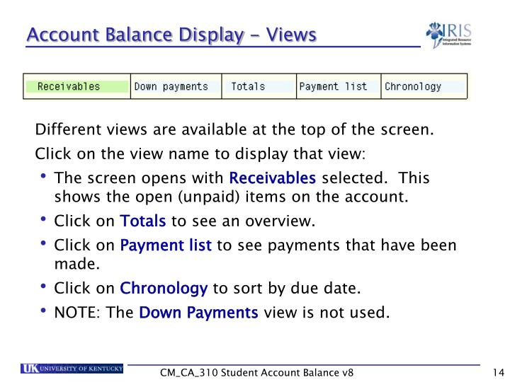 Account Balance Display - Views
