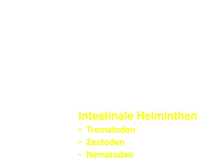 Intestinale Helminthen