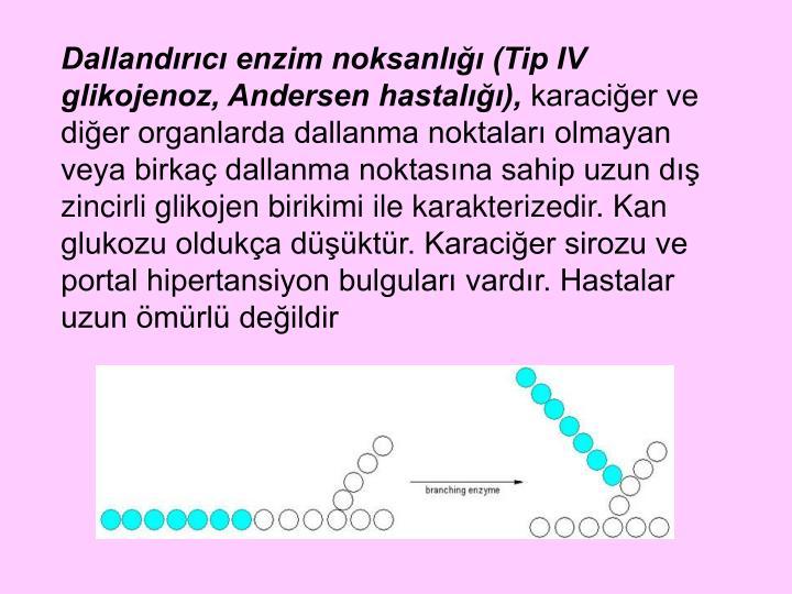 Dallandırıcı enzim noksanlığı (Tip IV glikojenoz, Andersen hastalığı),