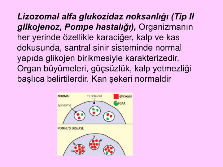 Lizozomal alfa glukozidaz noksanlığı (Tip II glikojenoz, Pompe hastalığı),