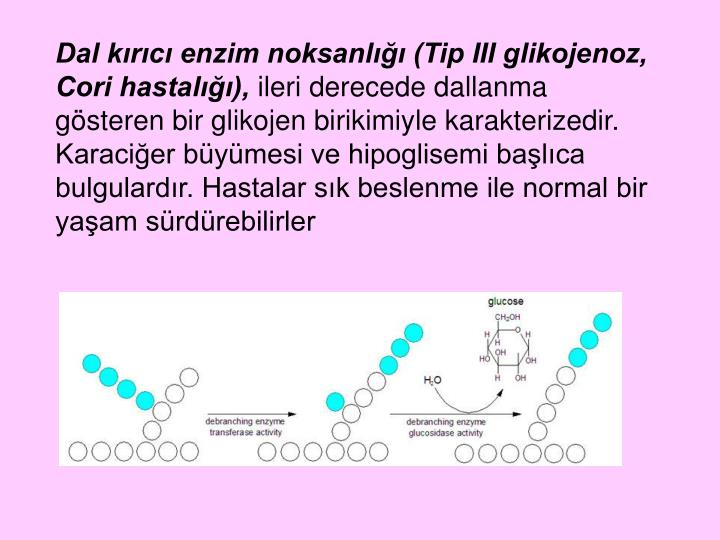 Dal kırıcı enzim noksanlığı (Tip III glikojenoz, Cori hastalığı),