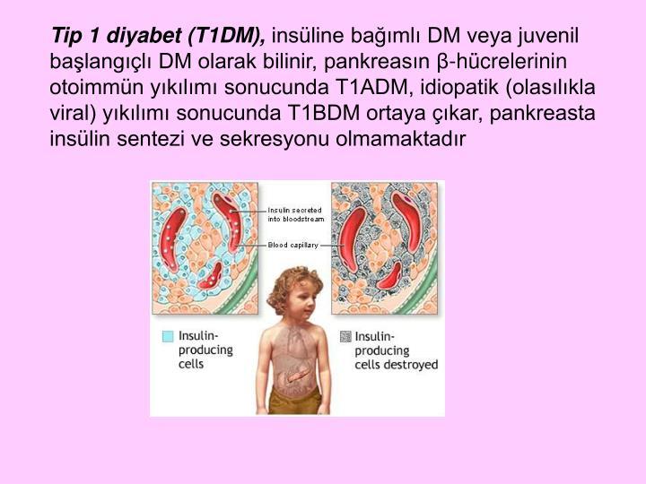 Tip 1 diyabet (T1DM),