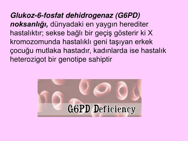 Glukoz-6-fosfat dehidrogenaz (G6PD) noksanlığı,