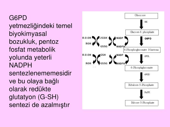 G6PD yetmezliğindeki temel biyokimyasal bozukluk, pentoz fosfat metabolik yolunda yeterli NADPH sentezlenememesidir ve bu olaya bağlı olarak redükte glutatyon (G-SH) sentezi de azalmıştır