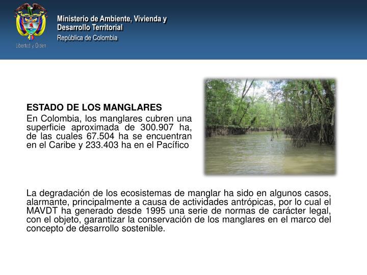 ESTADO DE LOS MANGLARES