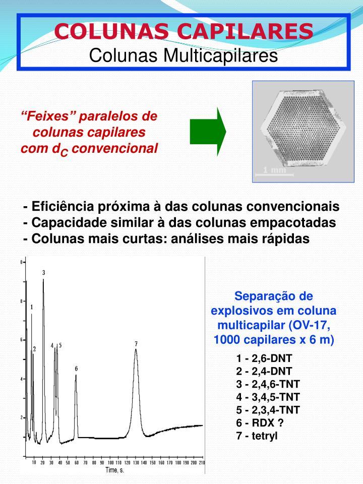 Feixes paralelos de colunas capilares com d