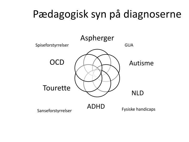 Pædagogisk syn på diagnoserne