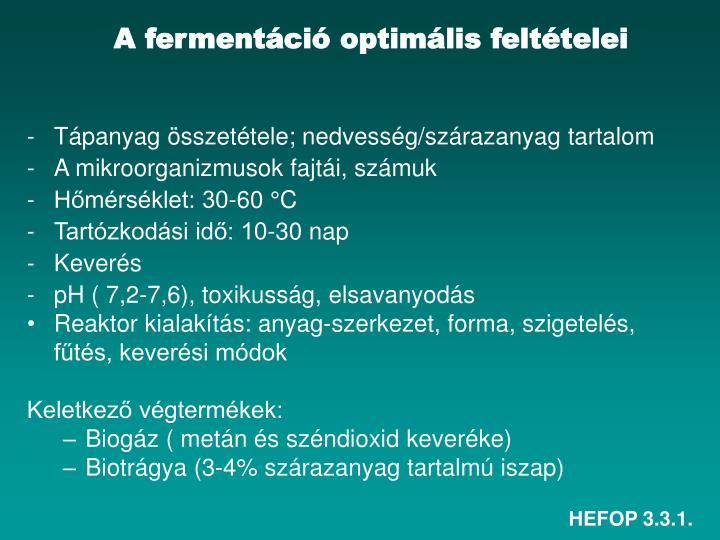 A fermentáció optimális feltételei