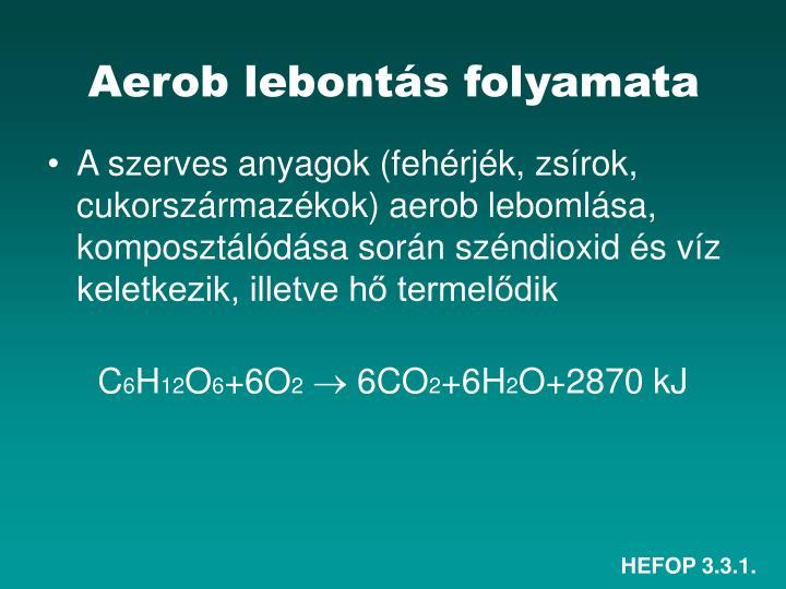 Aerob lebontás folyamata