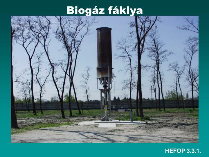 Biogáz fáklya