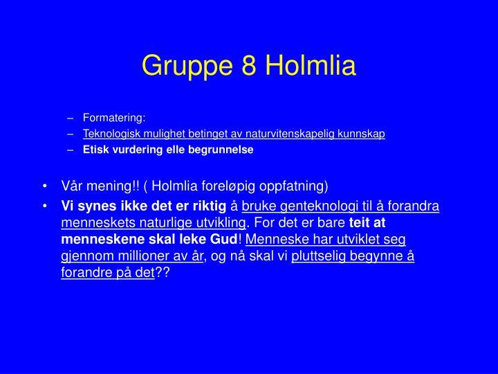 Gruppe 8 Holmlia
