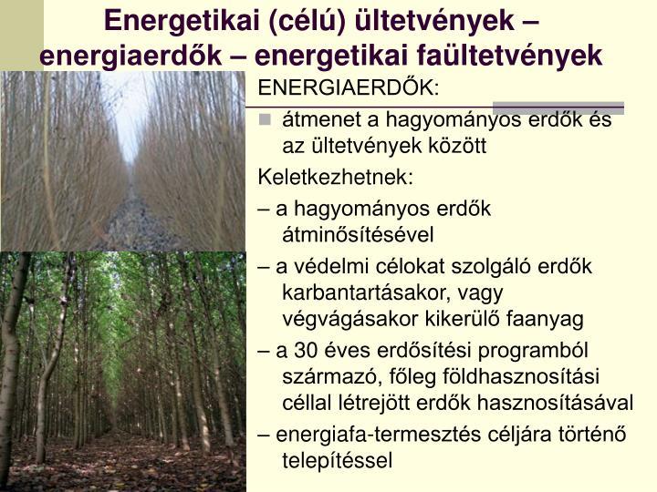 Energetikai (célú) ültetvények – energiaerdők – energetikai faültetvények