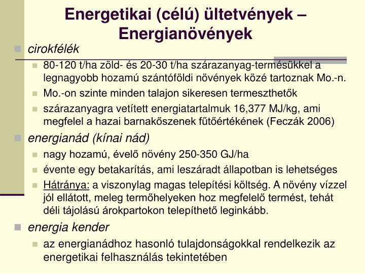 Energetikai (célú) ültetvények –Energianövények