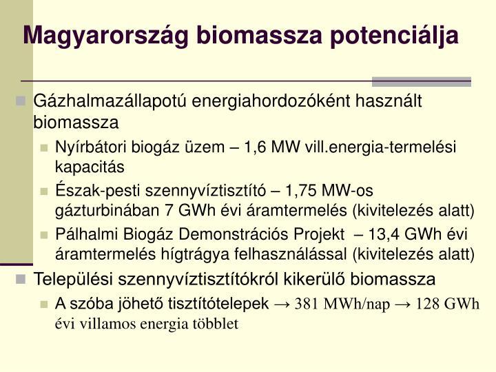 Magyarország biomassza potenciálja