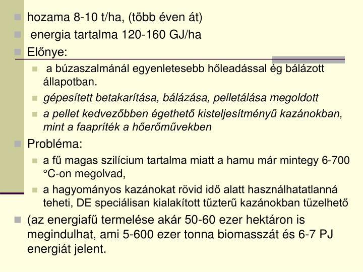 hozama 8-10 t/ha, (több éven át)
