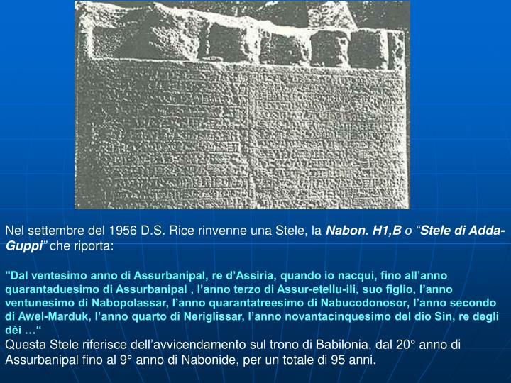 Nel settembre del 1956 D.S. Rice rinvenne una Stele, la