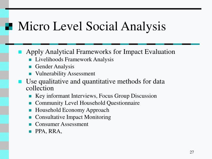 Micro Level Social Analysis