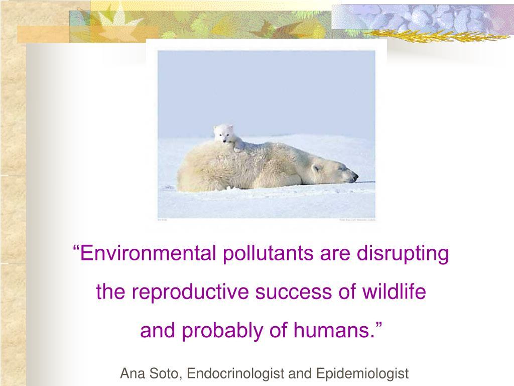 """Environmental pollutants are disrupting"