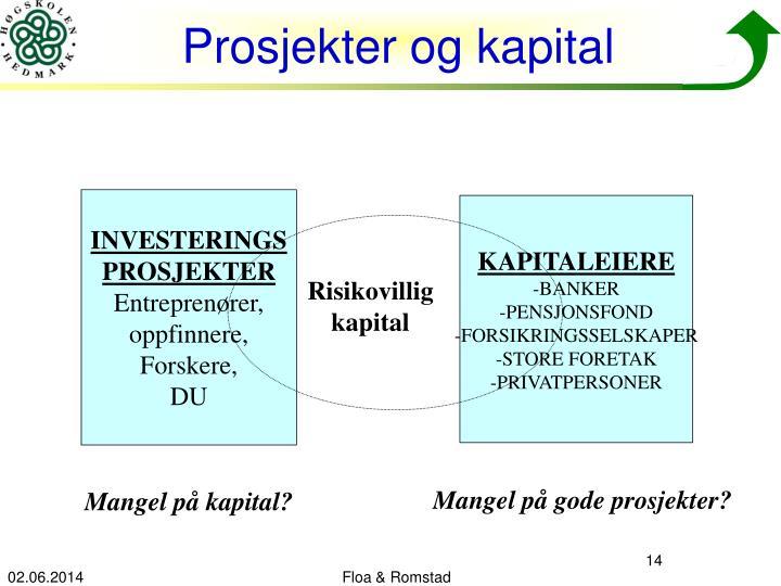 Prosjekter og kapital