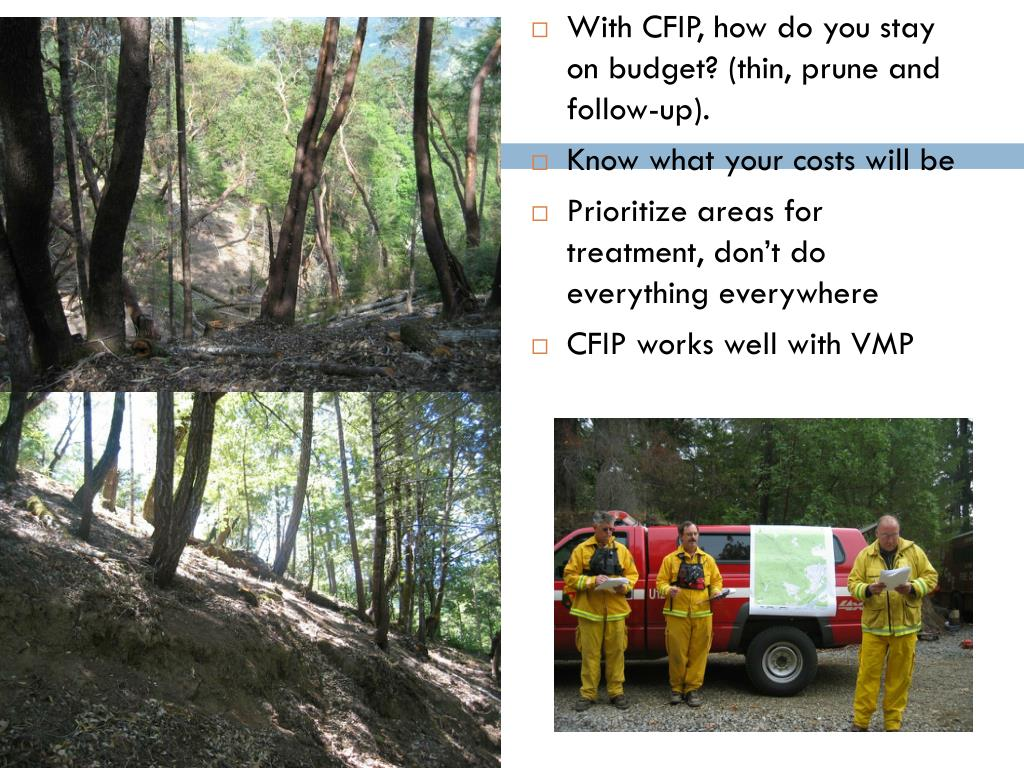 With CFIP, how do you stay on budget? (thin, prune and follow-up).