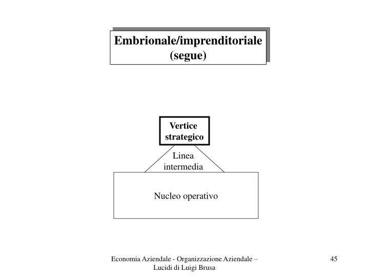 Embrionale/imprenditoriale