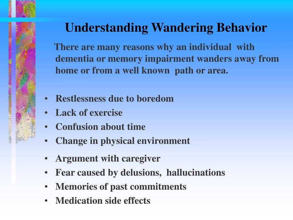 Understanding Wandering Behavior