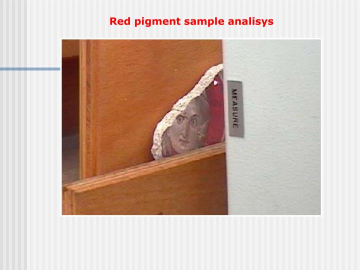 Red pigment sample analisys