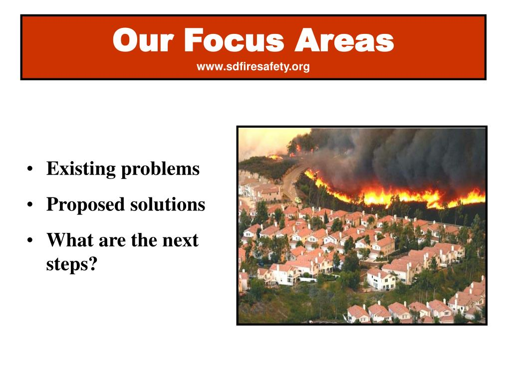 Our Focus Areas