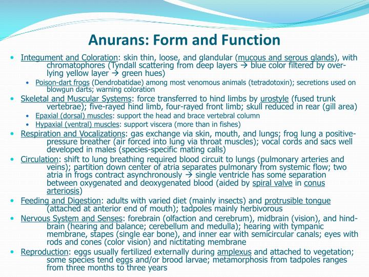 Anurans: Form and Function