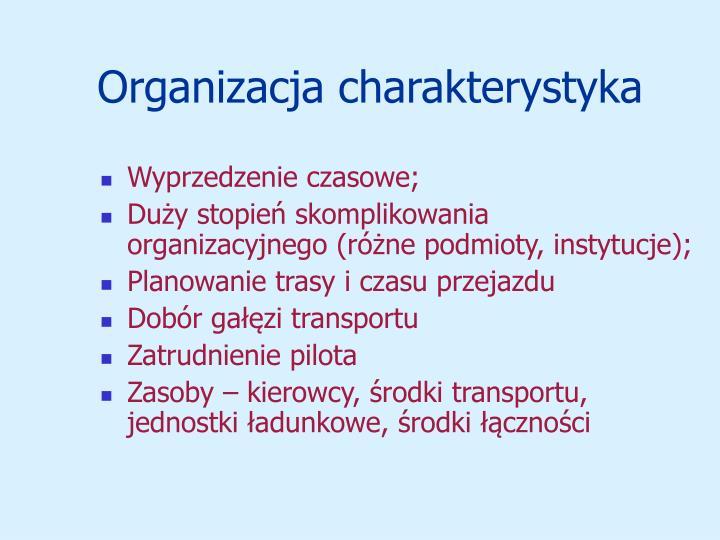 Organizacja charakterystyka