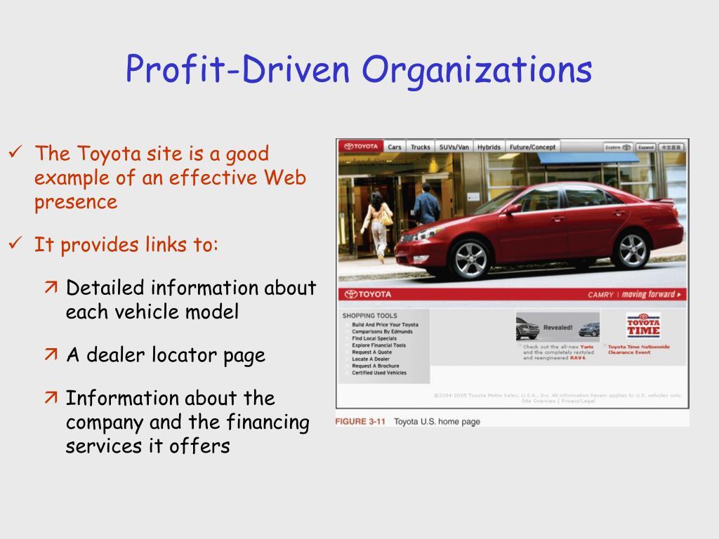 Profit-Driven Organizations