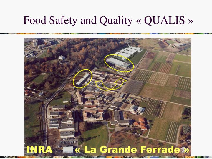Food Safety and Quality « QUALIS »