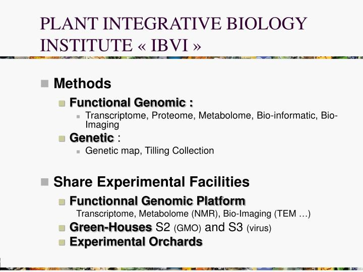 PLANT INTEGRATIVE BIOLOGY INSTITUTE « IBVI »